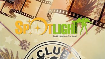 November 2019 Spotlight has been released!